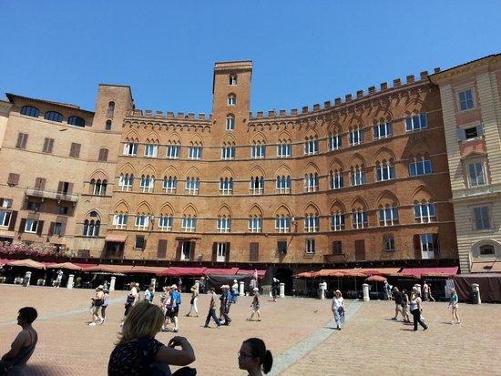 Piazza del Campo : La Piazza