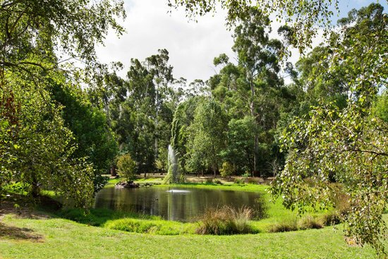 York on Lilydale: The hotel's own lake