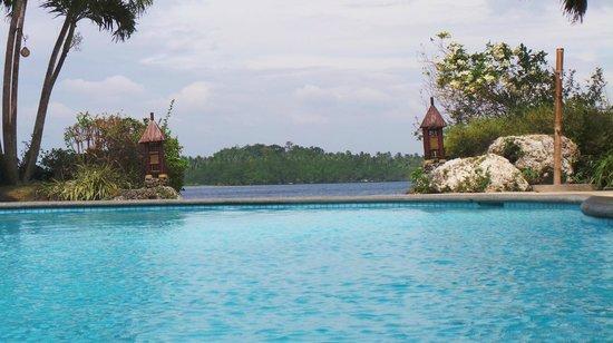 Pearl Farm Beach Resort: Swimming pool view