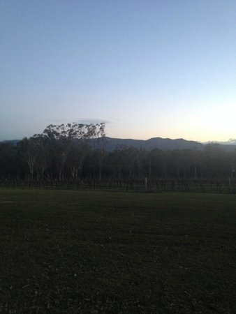 Spicers Vineyards Estate: Property surrounds