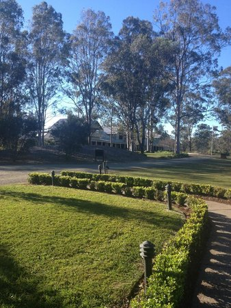 Spicers Vineyards Estate : View from restaurant