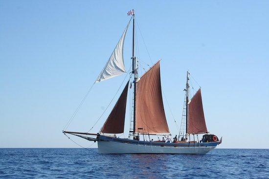 The Andrea Jensen Boat Trip: Andrea Jensen op open zee