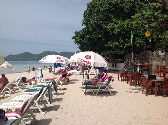 Chaba Samui Resort: fantastic beach