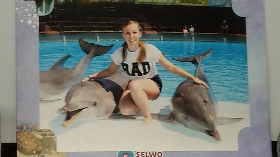 Selwo Marina : photo with the dolphins :D