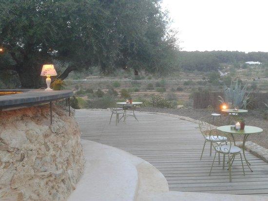 Can Domingo Ristorante Italiano: giardino1