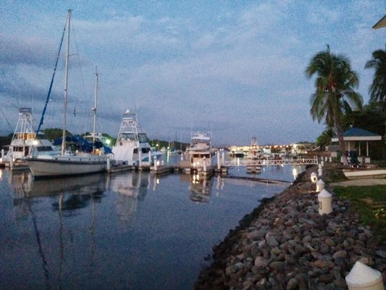 Puerto Azul Boutique Resort & Marina : The Marina