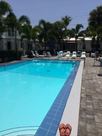 "Can you say ""refreshing"" ?! 