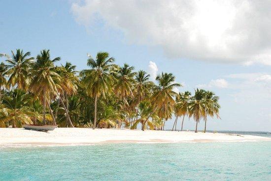Isla Saona: Saona Beach