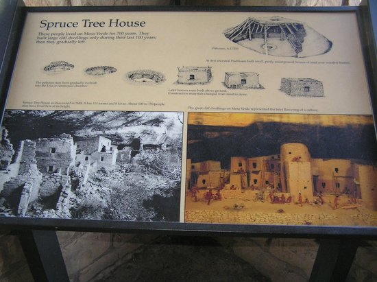 Spruce Tree House: Spiegazioni