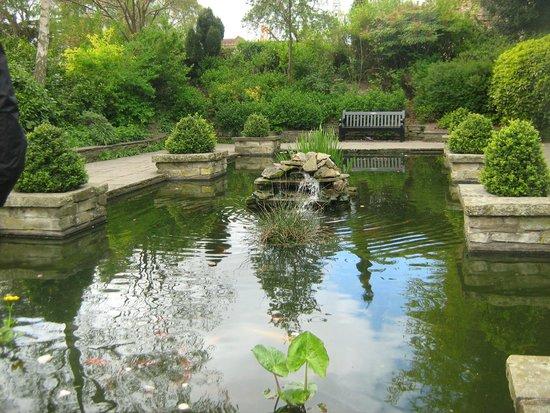 City Sightseeing UK - Colchester: Koi Pond
