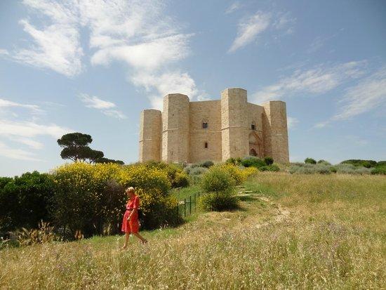 Castel del Monte, a fine Giugno 2104. Magnifico.