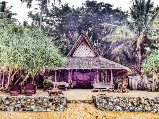 Flower Island Resort : The bar