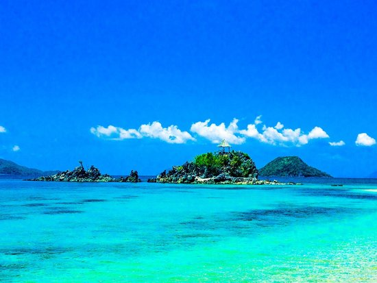 Flower Island Resort : The view