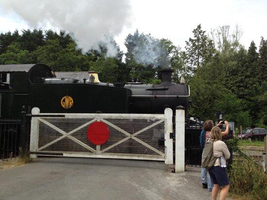 Sea Trout Inn: Steam train to Totnes