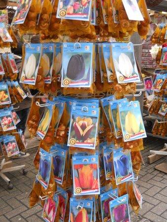 Flower Market / Bloemenmarkt : tulipani
