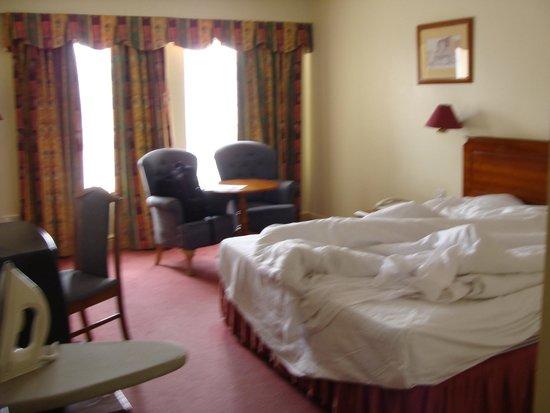 Maldron Hotel Pearse Street: room