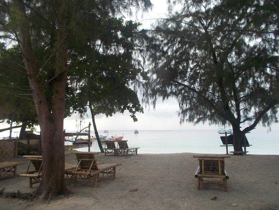 Green View Beach Resort: great view