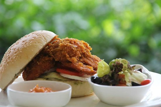 Trident, Agra: Crumb fried spicy chicken tikka served with mayonnaise and mint chutney
