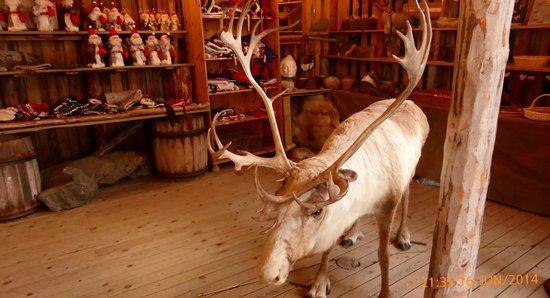 Northern Norway, นอร์เวย์: boutique de souvenir des Samis