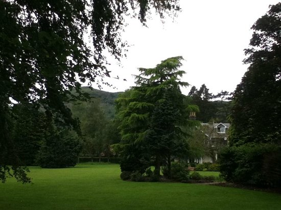 The Wordsworth Hotel and Spa: View