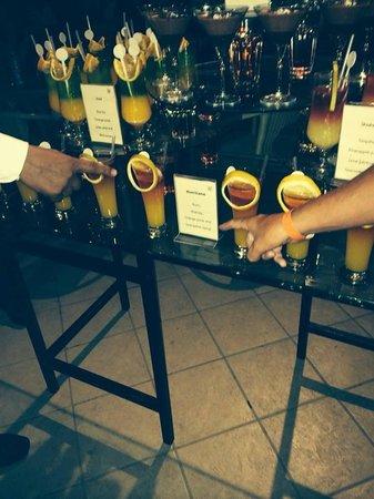 Jaz Mirabel Park : cocktail party