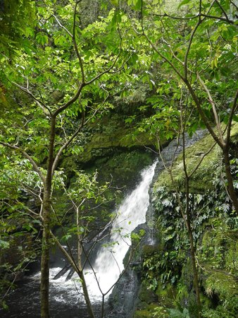 Papatowai, New Zealand: Lower section of McLean Falls