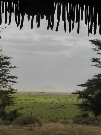 Amboseli Serena Safari Lodge : Views from common area