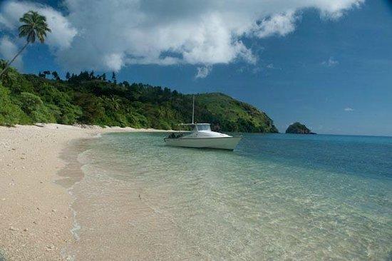 Νήσος Κανταβού, Φίτζι: Papageno Resort dive boat