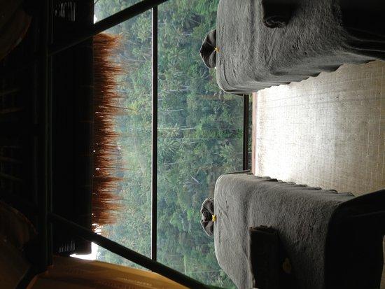 Kupu Kupu Barong Villas and Tree Spa : Massage relax