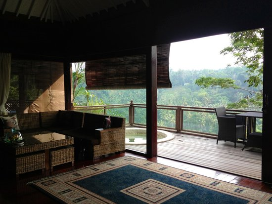 Kupu Kupu Barong Villas and Tree Spa: Belle vue