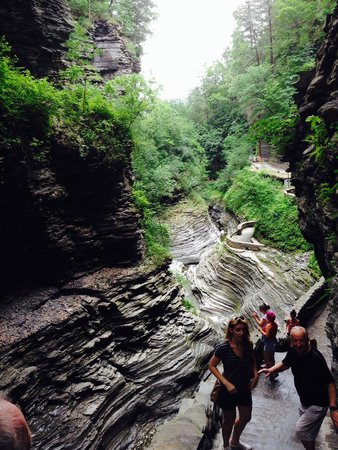 Watkins Glen State Park : Amazing natural beauty