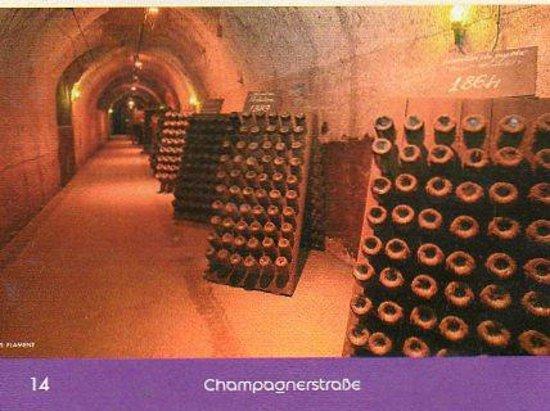Auberge Champenoise : visite de cave