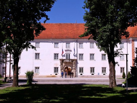 Murska Sobota Regional Museum: Замок