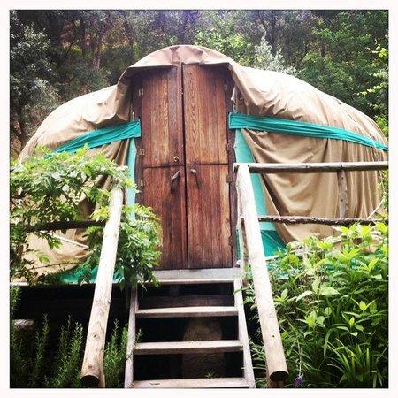 Yurt Holiday Portugal : Chestnut Tree Yurt