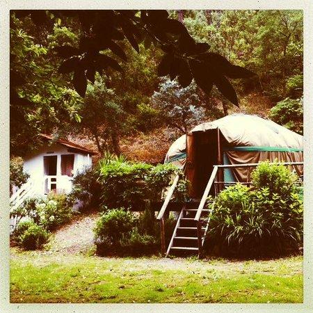 Yurt Holiday Portugal : Chestnut Tree Yurt & Washroom