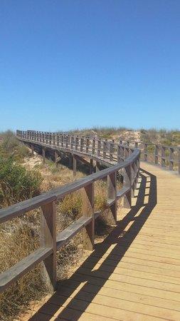 Alvor Boardwalk: One of the boardwalks you can take