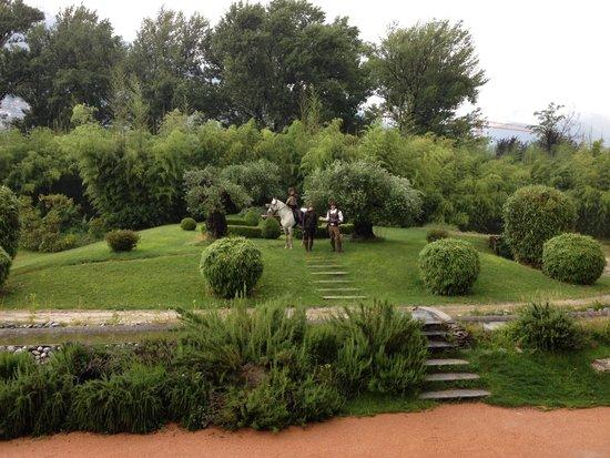 Falconeria Locarno: Beautiful!