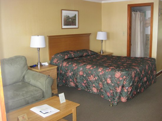 Knotty Pine Motel: Deluxe