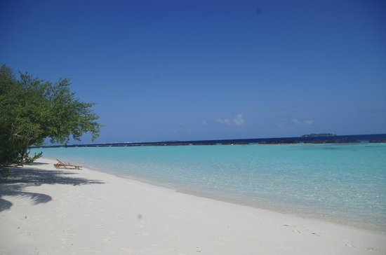 Kurumba Maldives: Beach