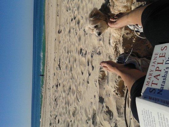 North Coast Holiday Parks Tuncurry Beach: tuncurry beach