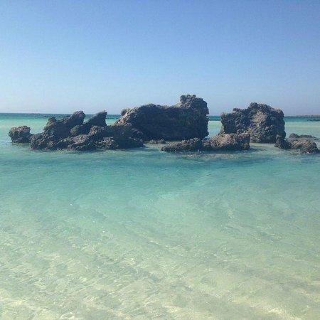 Elafonisi Resort by Kalomirakis Family : spiaggia elafonisi