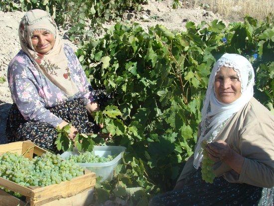 Cappadocia Akkoy Evleri Caves : Peasant Women