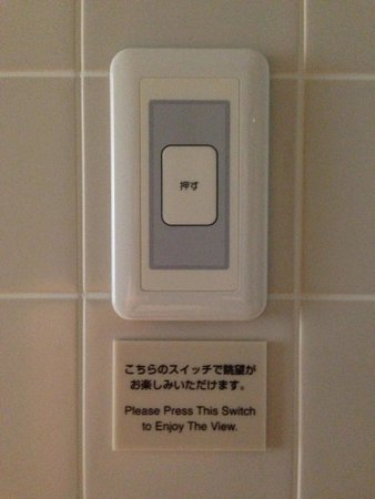 Mitsui Garden Hotel Ginza Premier: Nice idea! Enjoy view and TV from bath room!