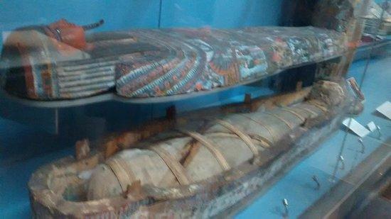 British Museum: p7