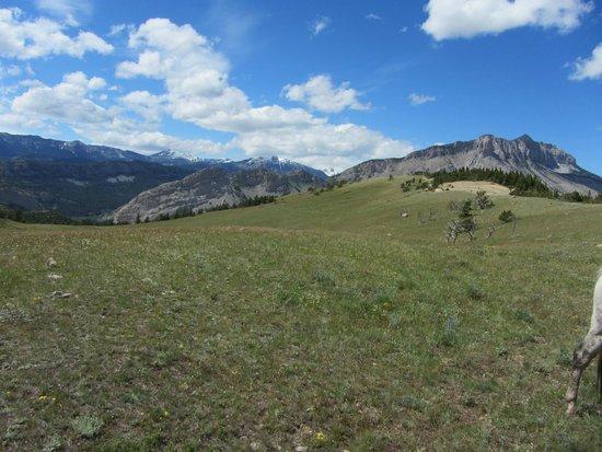 JJJ Wilderness Ranch: Scenery