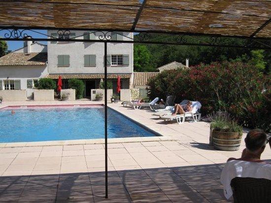 Domaine Le Bois Des Dames : Het zwembad.