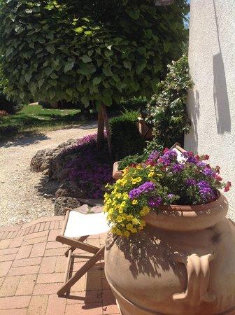 Agriturismo Santa Caterina : fiori