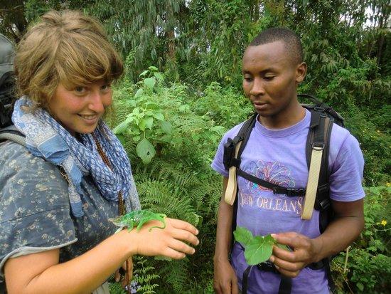 Usambara Mountains: Guide Boni Mdoe -a cameleon specialist