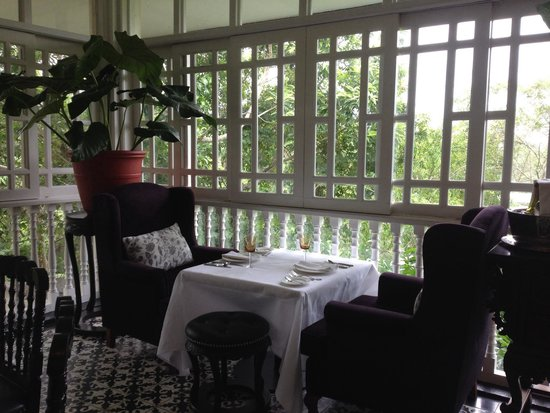 Antonio's Garden: A meal for two