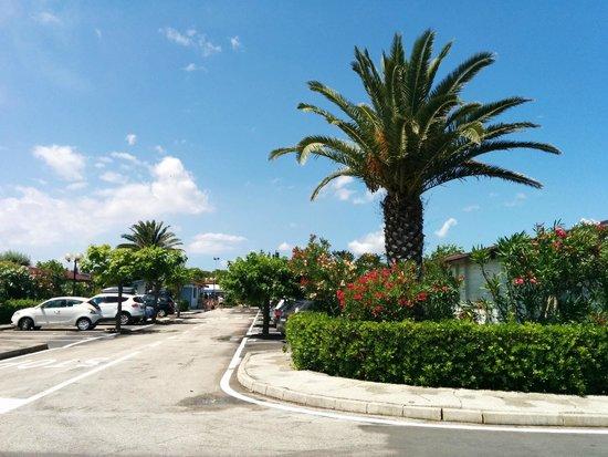Villaggio Club Centro Vacanze: Vista dalla camera